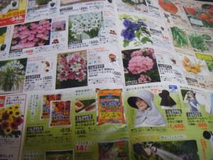 兼業主婦の食材宅配体験談 コープデリには園芸用品もあるよ