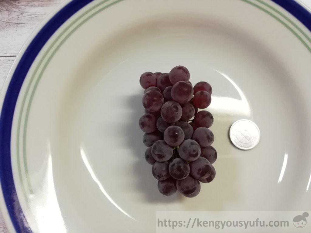 食材宅配コープデリで購入した「デラウェア」1円玉と比較