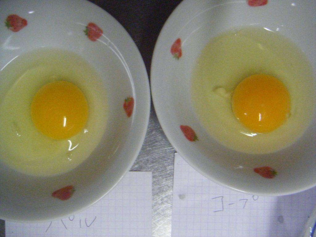 パルシステムとコープデリの卵を割ってみたよ