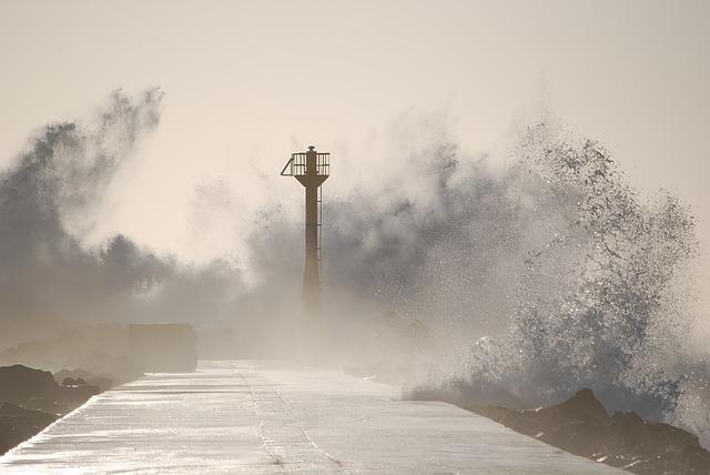 台風の日にも来てくれるパルシステム