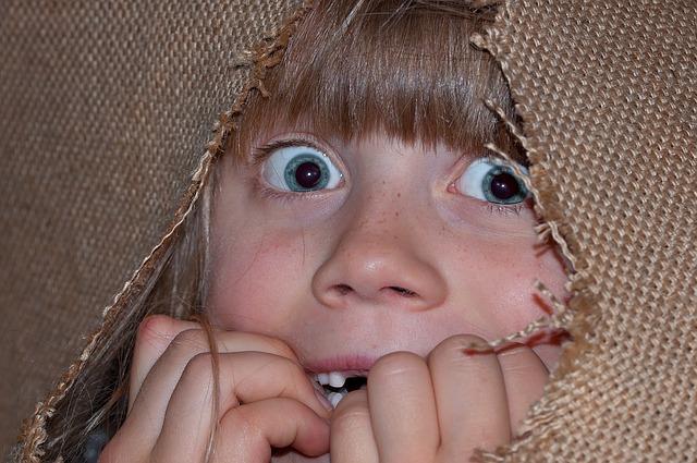 食材宅配体験談 最初は警戒するよねって話 怖がっている女の子の画像