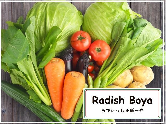 有機野菜なららでぃっしゅぼーや
