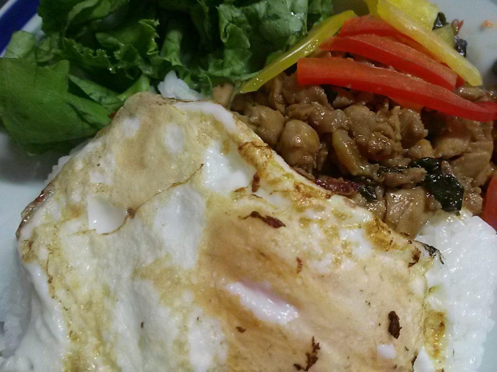 コープデリの簡単料理キット ガパオライス旨辛鶏肉バジル炒め 作ってみたよ
