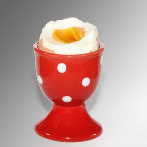 食材宅配パルシステム ゆで卵にも塩