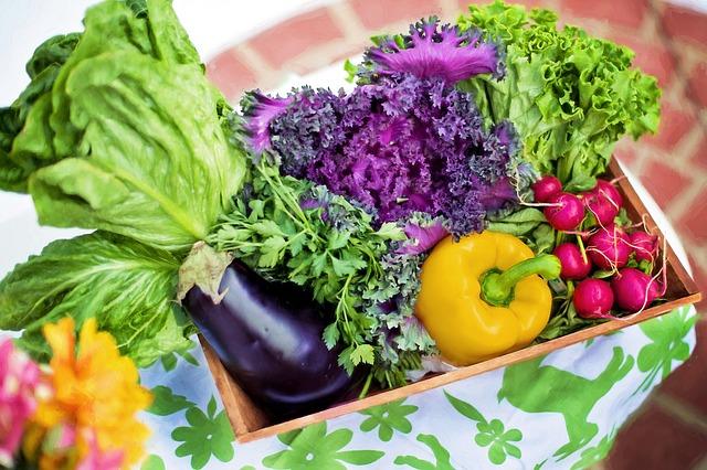 兼業主婦の食材宅配体験談 有機野菜って何?食材宅配で有機野菜を購入できるところはある?