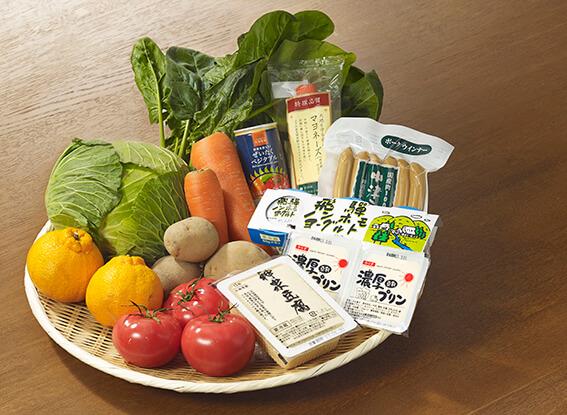 食材宅配「大地を守る会」野菜セット