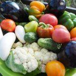 食材宅配パルシステムの入会特典 はじめてセットを全部ご紹介!