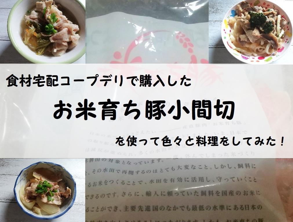 食材宅配コープデリで購入した「お米育ち豚小間切れ」を使って色々と料理をしてみた!