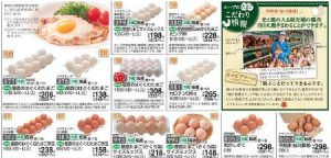 食材宅配コープデリメインカタログ「ハピ・デリ」の卵画像