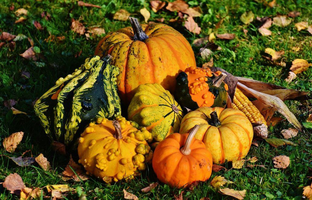 食材宅配パルシステムの冷凍野菜「栗かぼちゃ」