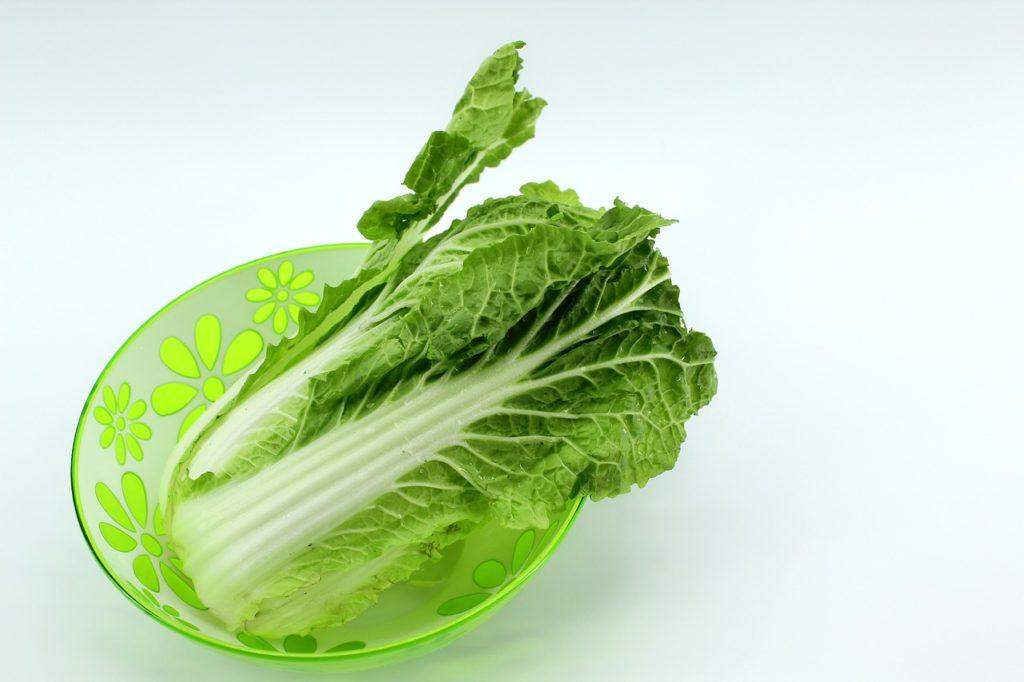 コープ「白菜漬」酸味が疲れた体に喝を入れてくれる!パルシステムと原材料を比較