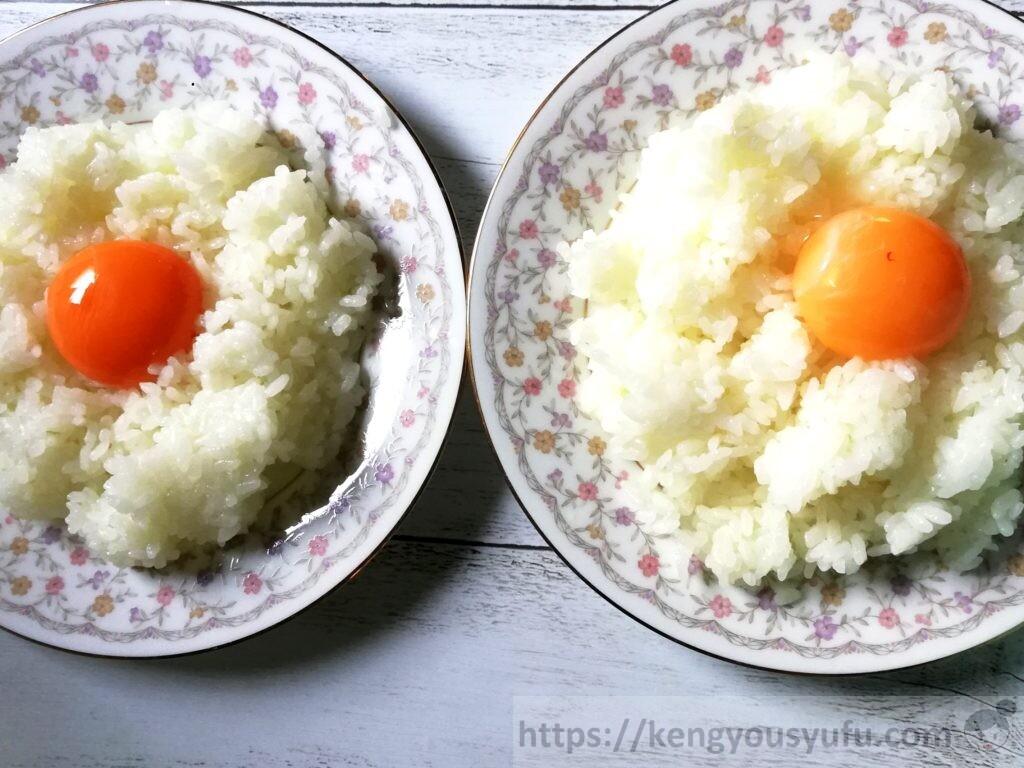 野菜がおいしい食材宅配オイシックス「たまご」コープ産直たまごと比較してみた 生卵かけごはん