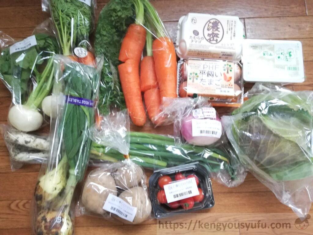 有機野菜食材宅配「ココノミ」実際にお試ししてみました!