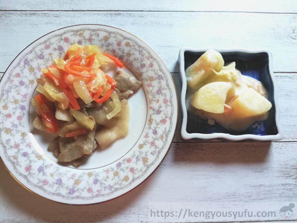 ウェルネスダイニング 制限食料理キット「豚肉の野菜マリネ+ジャーマンポテト風サラダ」完成画像